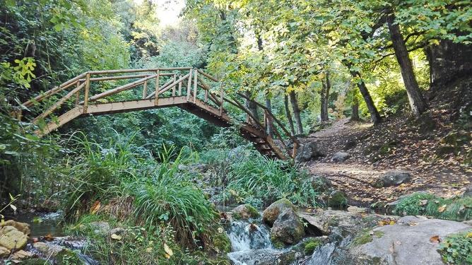 Les couleurs de l'automne viennent à Cazorla